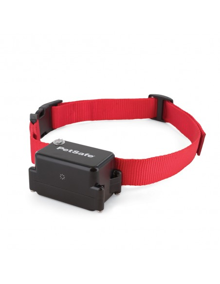 Stubborn Dog Collar