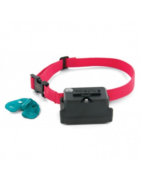 Super 5 Dog Collar
